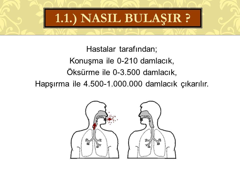 1.1.) NASIL BULAŞIR .