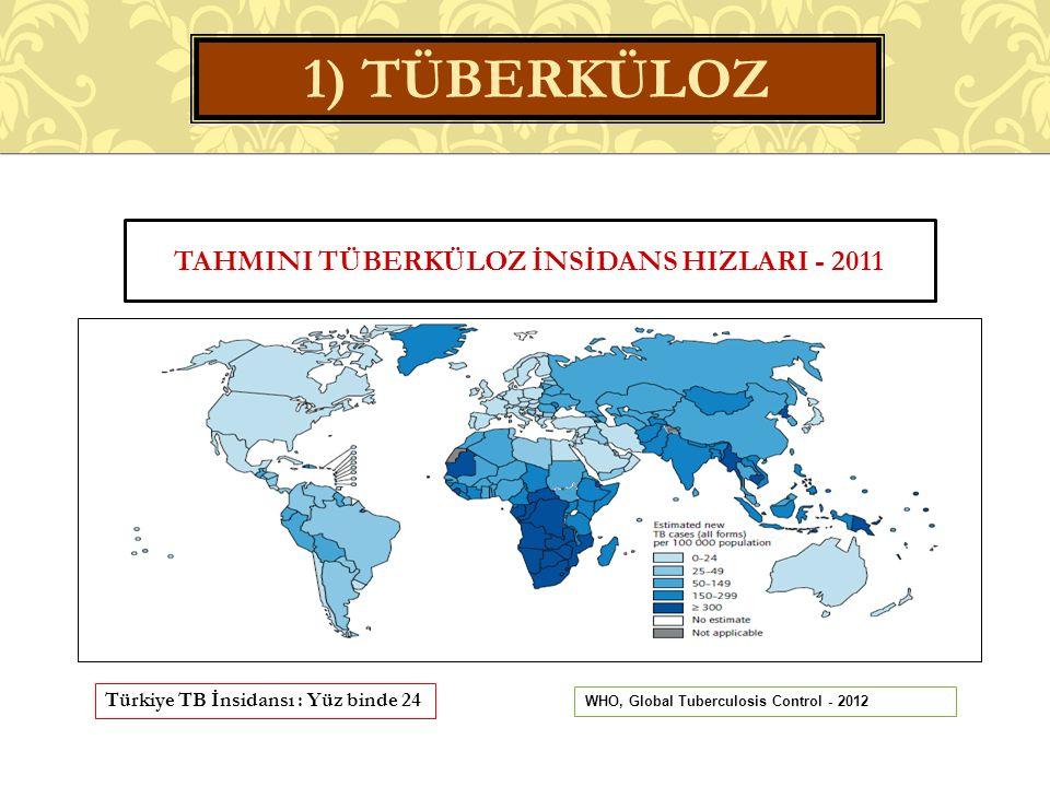 TAHMINI TÜBERKÜLOZ İNSİDANS HIZLARI - 2011 Türkiye TB İnsidansı : Yüz binde 24 1) TÜBERKÜLOZ WHO, Global Tuberculosis Control - 2012