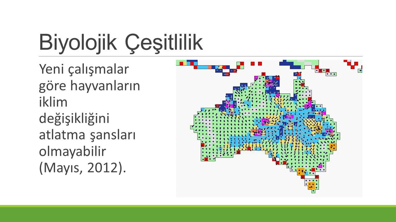 Biyolojik Çeşitlilik Yeni çalışmalar göre hayvanların iklim değişikliğini atlatma şansları olmayabilir (Mayıs, 2012).