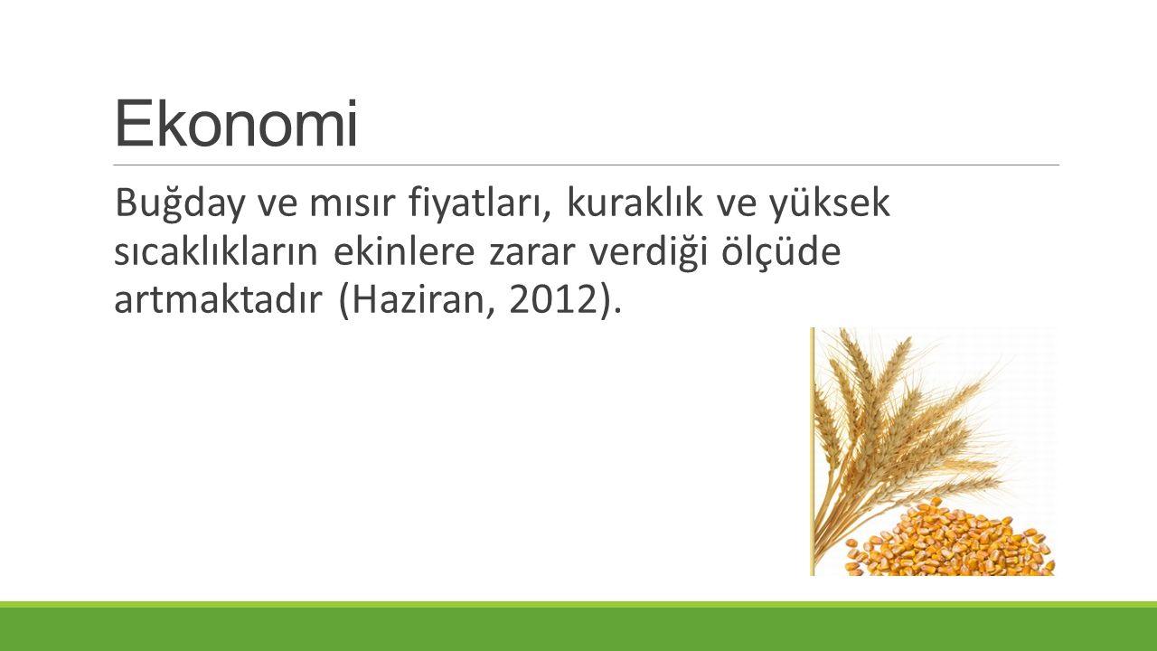 Ekonomi Buğday ve mısır fiyatları, kuraklık ve yüksek sıcaklıkların ekinlere zarar verdiği ölçüde artmaktadır (Haziran, 2012).