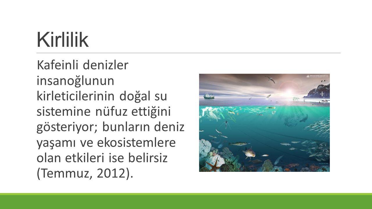Kirlilik Kafeinli denizler insanoğlunun kirleticilerinin doğal su sistemine nüfuz ettiğini gösteriyor; bunların deniz yaşamı ve ekosistemlere olan etkileri ise belirsiz (Temmuz, 2012).