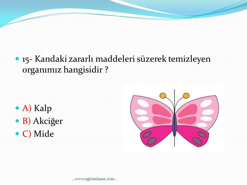 15- Kandaki zararlı maddeleri süzerek temizleyen organımız hangisidir ? A) Kalp B) Akciğer C) Mide …www.egitimhane.com…
