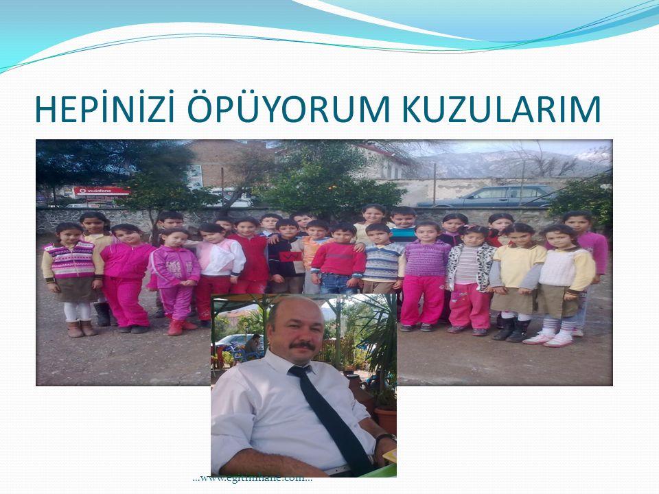 HEPİNİZİ ÖPÜYORUM KUZULARIM …www.egitimhane.com…