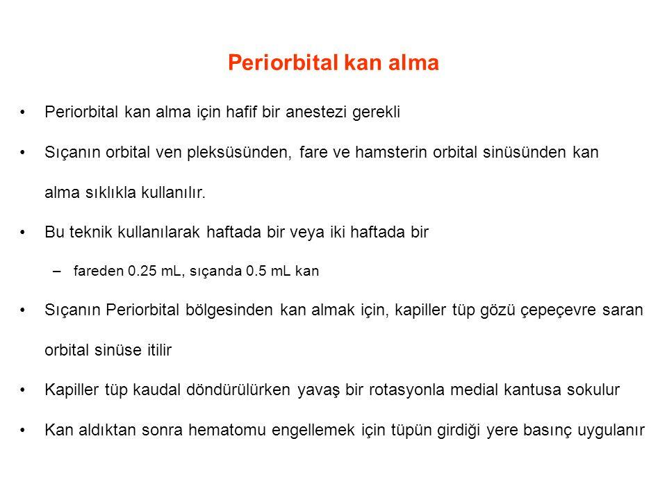 Periorbital kan alma Periorbital kan alma için hafif bir anestezi gerekli Sıçanın orbital ven pleksüsünden, fare ve hamsterin orbital sinüsünden kan alma sıklıkla kullanılır.