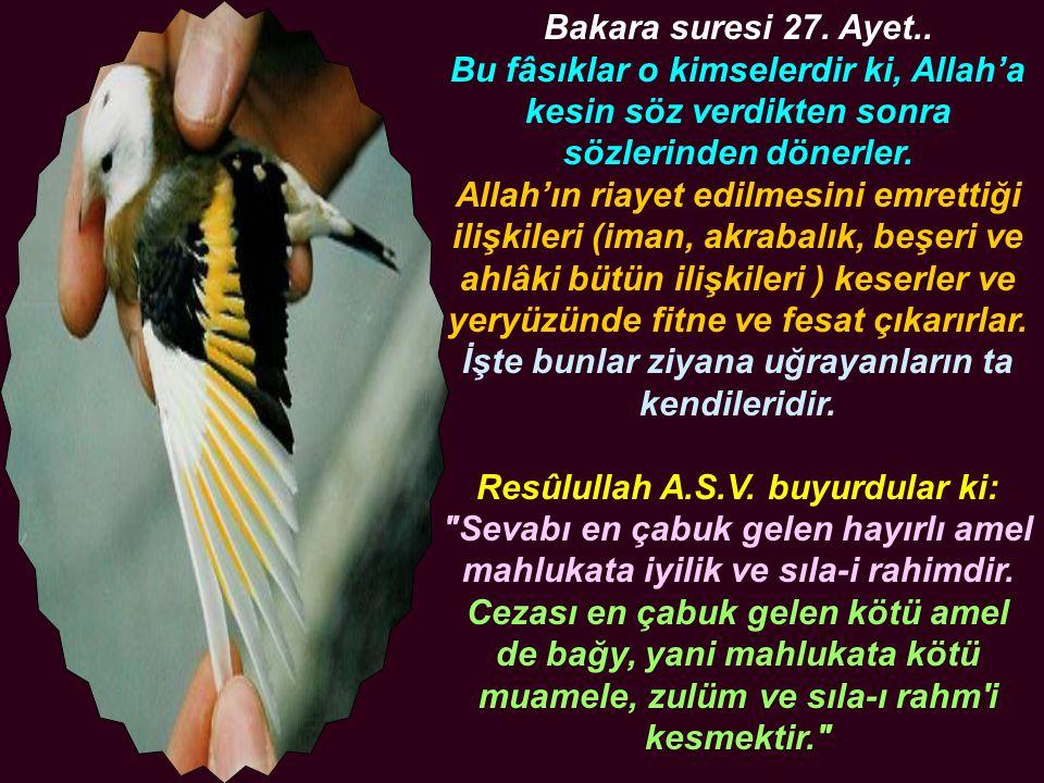 Bakara suresi 27. Ayet.. Bu fâsıklar o kimselerdir ki, Allah'a kesin söz verdikten sonra sözlerinden dönerler. Allah'ın riayet edilmesini emrettiği il