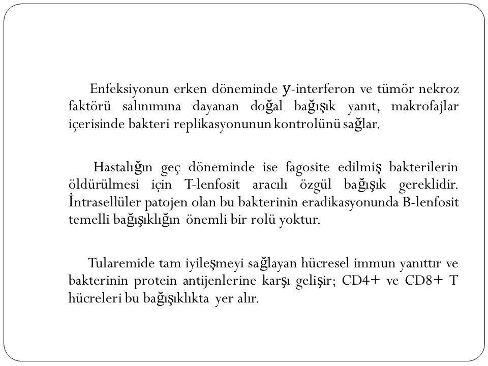 Enfeksiyonun erken döneminde у -interferon ve tümör nekroz faktörü salınımına dayanan do ğ al ba ğ ı ş ık yanıt, makrofajlar içerisinde bakteri replik