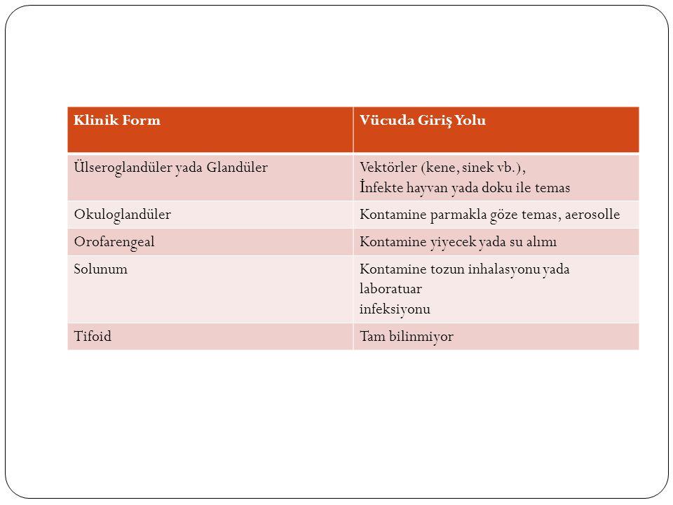 Klinik FormVücuda Giri ş Yolu Ülseroglandüler yada GlandülerVektörler (kene, sinek vb.), İ nfekte hayvan yada doku ile temas OkuloglandülerKontamine p