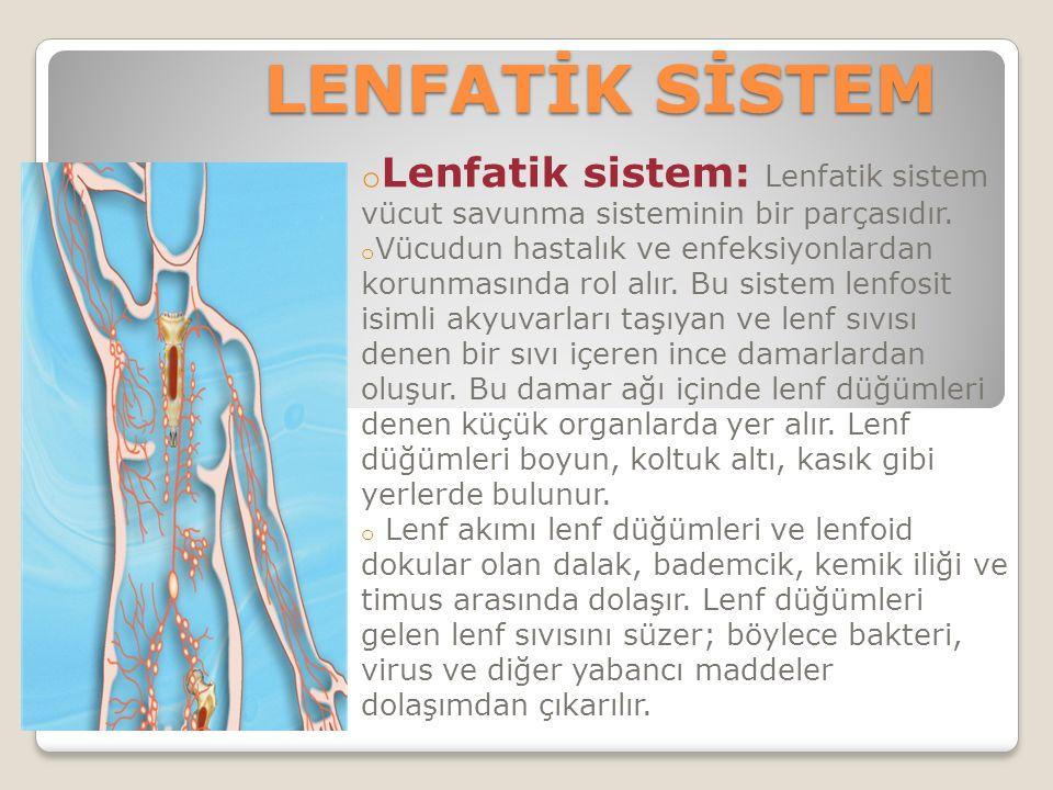 LENFATİK SİSTEM o Lenfatik sistem: Lenfatik sistem vücut savunma sisteminin bir parçasıdır.