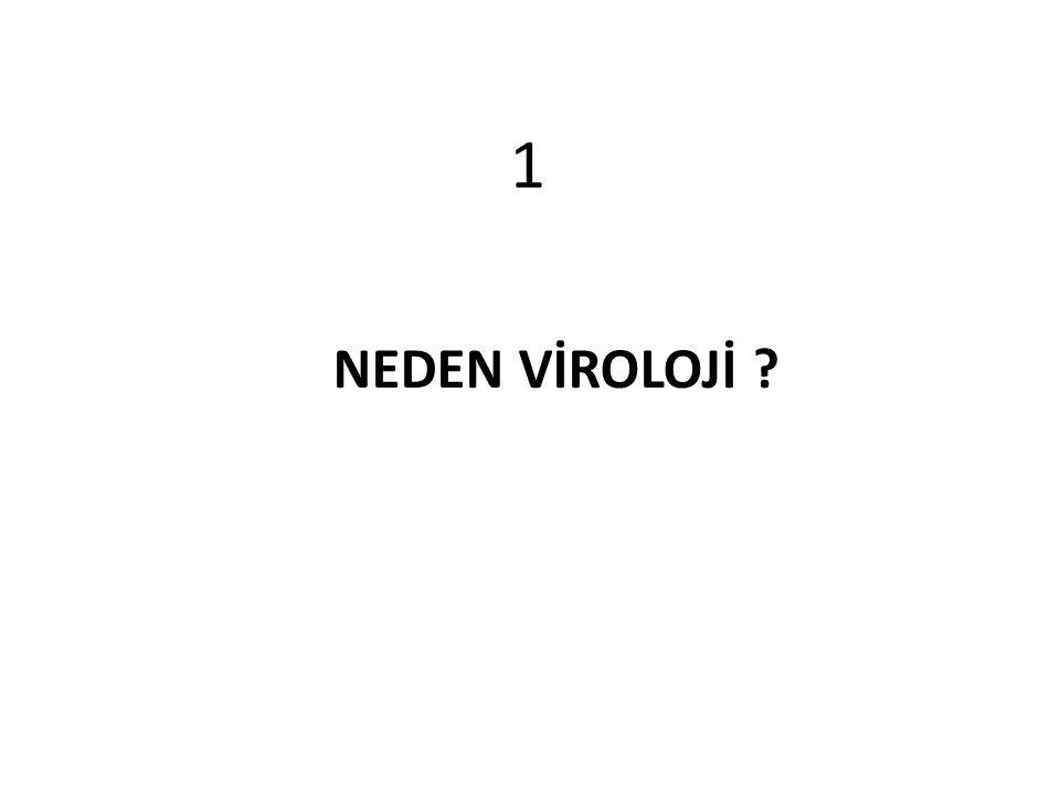 13 Virus ile enfekte bir ökaryotik hücrede 10 5 viriyon var HIV ile enfekte bir kişi günde 10 11 viriyon üretiyor