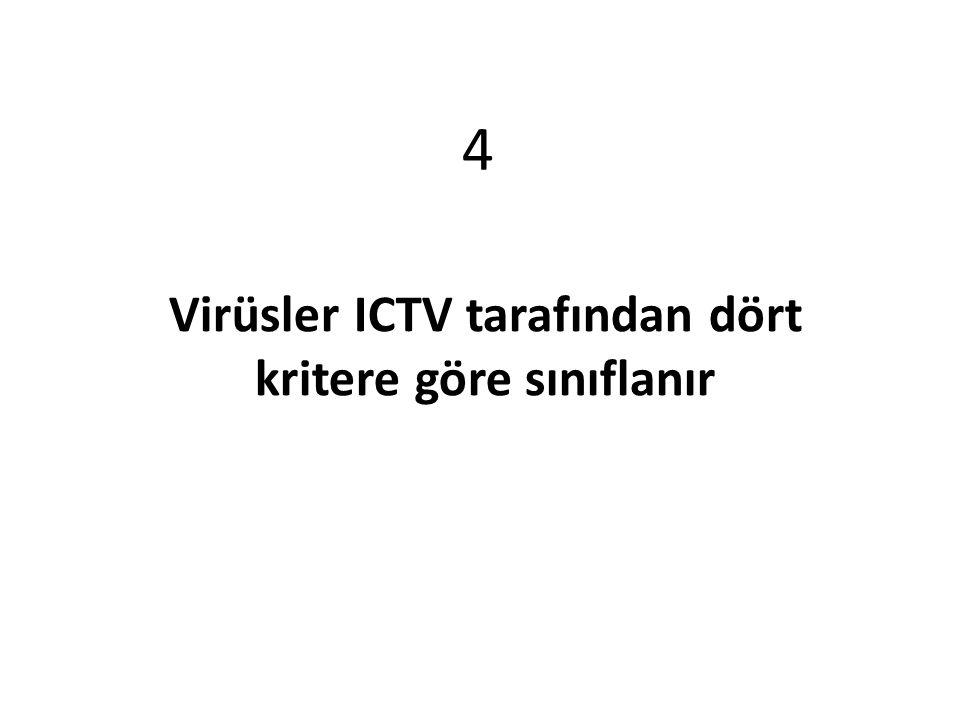 Virüsler ICTV tarafından dört kritere göre sınıflanır 4