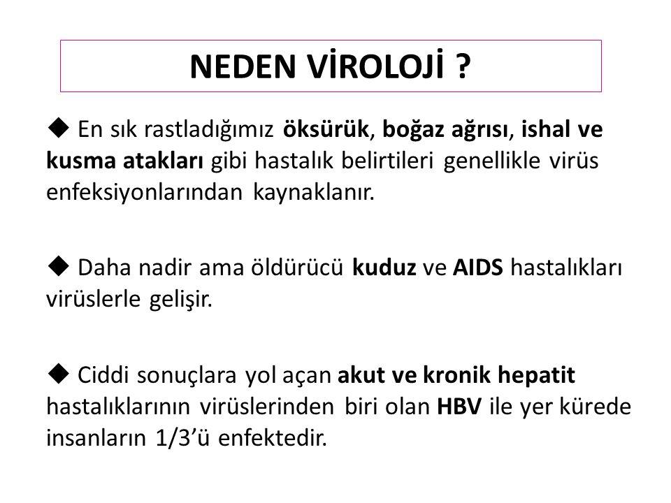 Virüs çoğalması 5