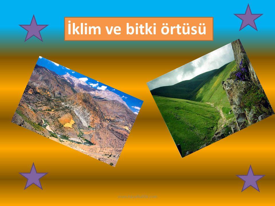 İklim ve bitki örtüsü www.hayalkatibi.com