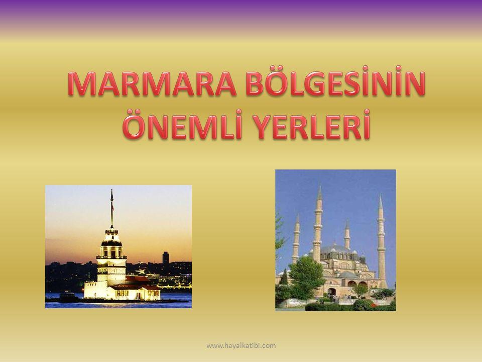 İstanbul Pilavı Sebzeli Tavuk Çorbası Poğaça Pazılı Kuzu KapamaPırasa BöreğiKaysepi kocaeli www.hayalkatibi.com