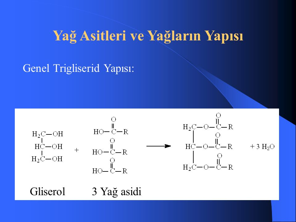 Yağ Asitleri ve Yağların Yapısı Genel Trigliserid Yapısı: Gliserol 3 Yağ asidi