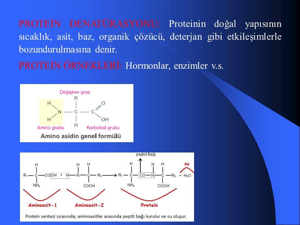 PROTEİN DENATÜRASYONU: Proteinin doğal yapısının sıcaklık, asit, baz, organik çözücü, deterjan gibi etkileşimlerle bozundurulmasına denir.