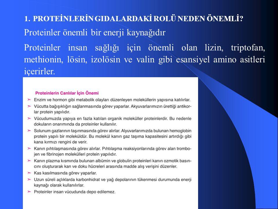 1.PROTEİNLERİN GIDALARDAKİ ROLÜ NEDEN ÖNEMLİ.