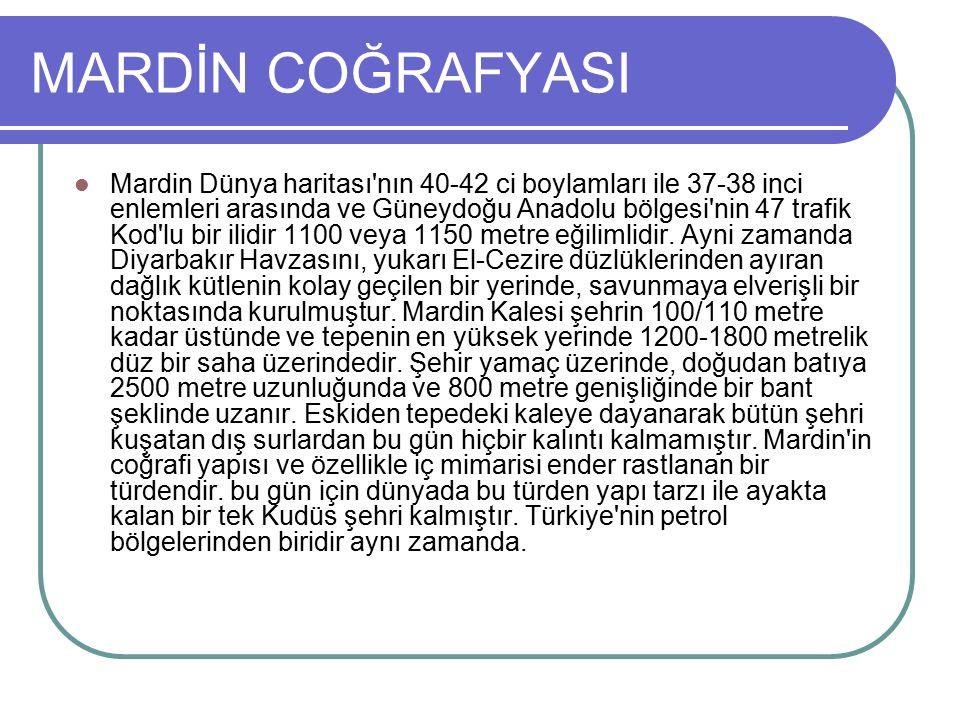 MARDİN COĞRAFYASI Mardin Dünya haritası nın 40-42 ci boylamları ile 37-38 inci enlemleri arasında ve Güneydoğu Anadolu bölgesi nin 47 trafik Kod lu bir ilidir 1100 veya 1150 metre eğilimlidir.