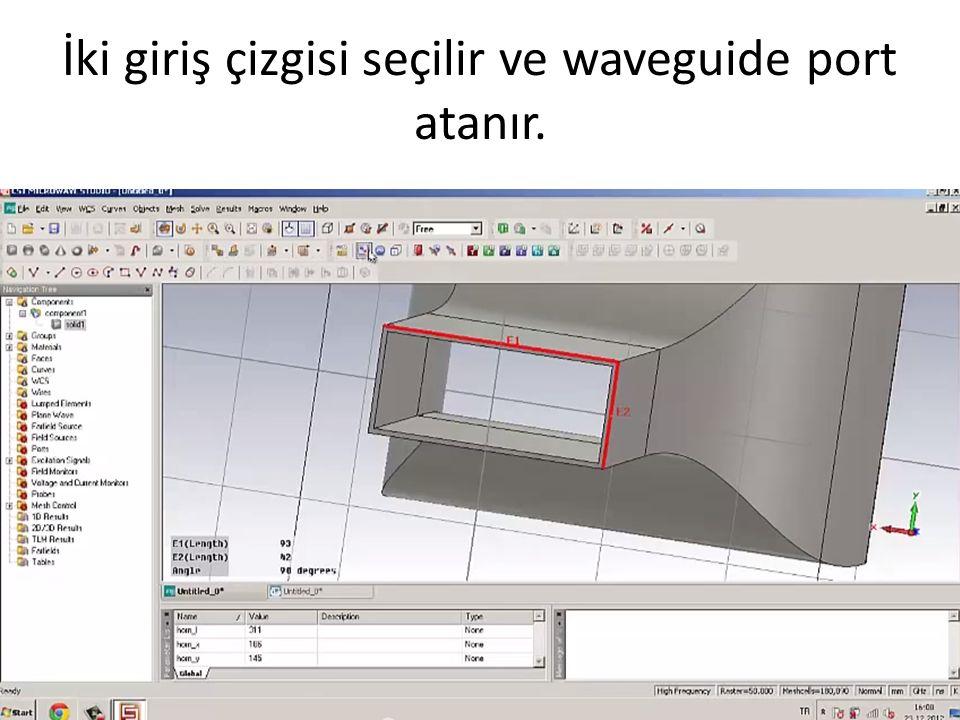 İki giriş çizgisi seçilir ve waveguide port atanır.