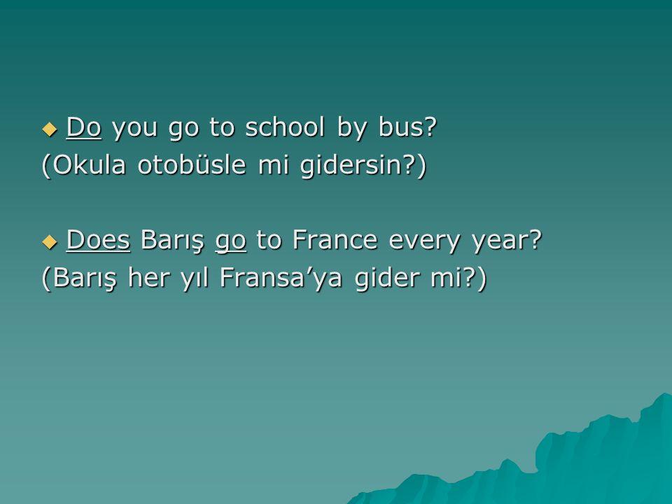  Do you go to school by bus? (Okula otobüsle mi gidersin?)  Does Barış go to France every year? (Barış her yıl Fransa'ya gider mi?)