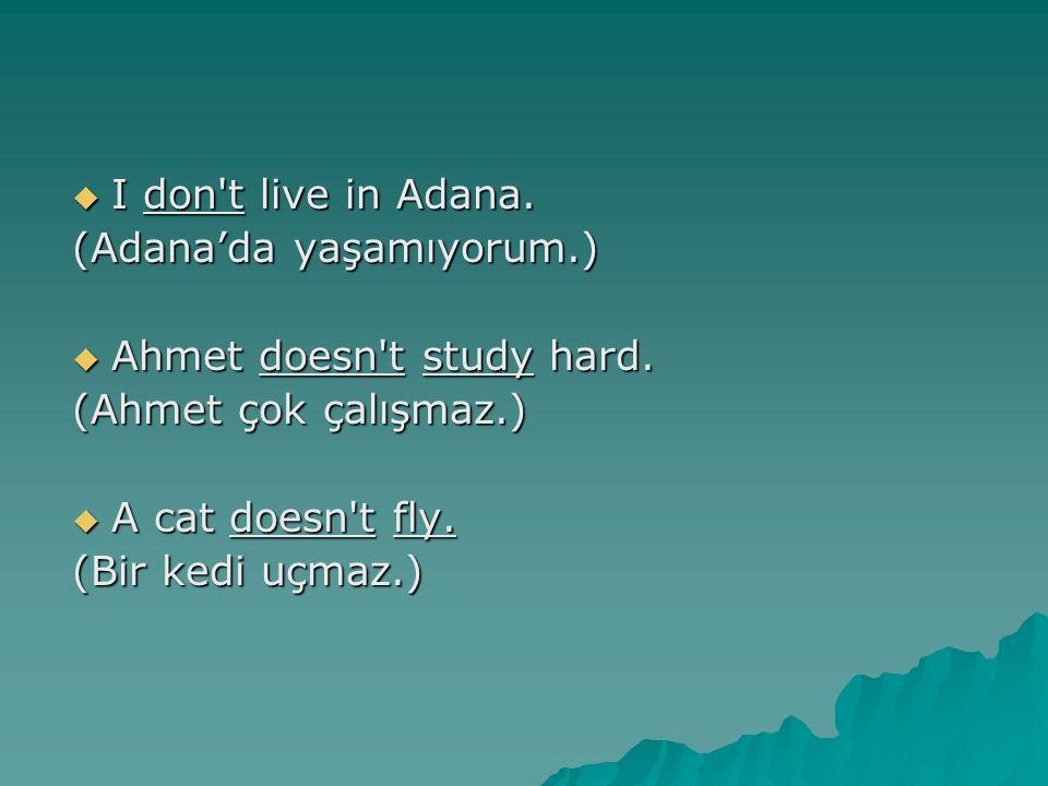 I don't live in Adana. (Adana'da yaşamıyorum.)  Ahmet doesn't study hard. (Ahmet çok çalışmaz.)  A cat doesn't fly. (Bir kedi uçmaz.)