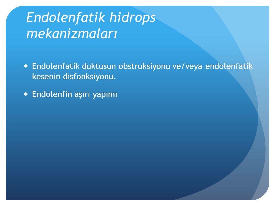 Ototoksisite Aminoglikozidler Diüretikler Aspirin Cisplatinum Eritromisin
