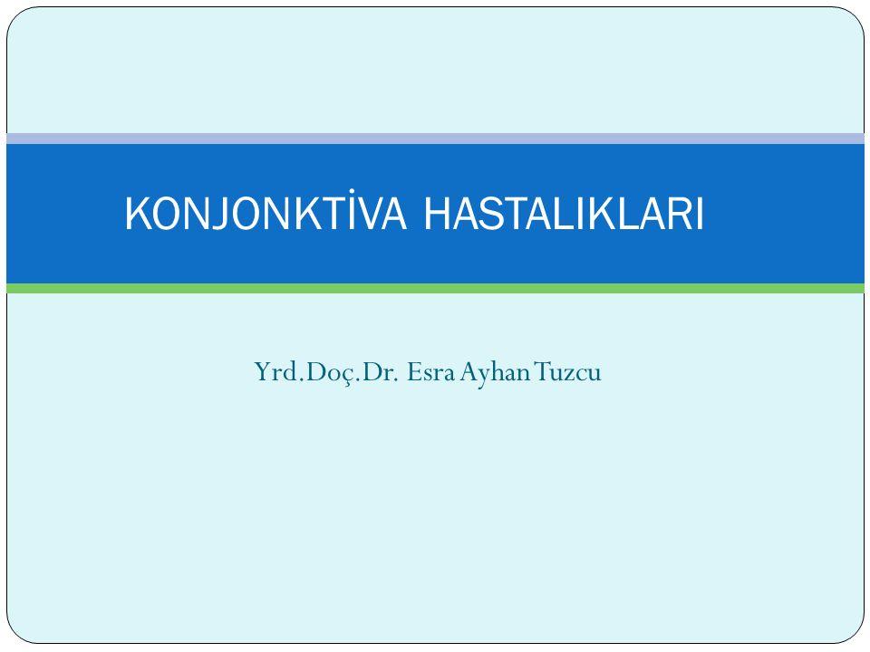Yrd.Doç.Dr. Esra Ayhan Tuzcu KONJONKTİVA HASTALIKLARI
