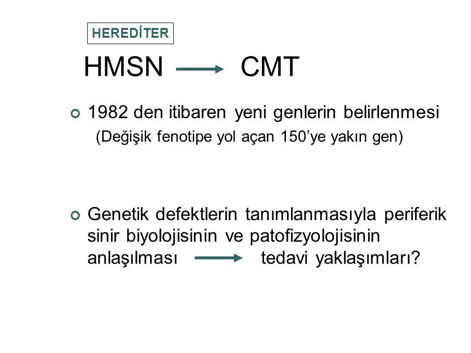 HMSN CMT 1982 den itibaren yeni genlerin belirlenmesi (Değişik fenotipe yol açan 150'ye yakın gen) Genetik defektlerin tanımlanmasıyla periferik sinir