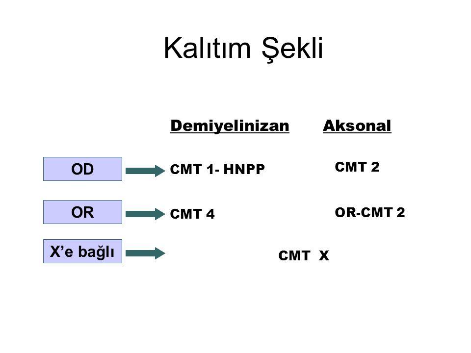 Kalıtım Şekli DemiyelinizanAksonal CMT 1- HNPP CMT 4 CMT 2 CMT X OD OR X'e bağlı OR-CMT 2