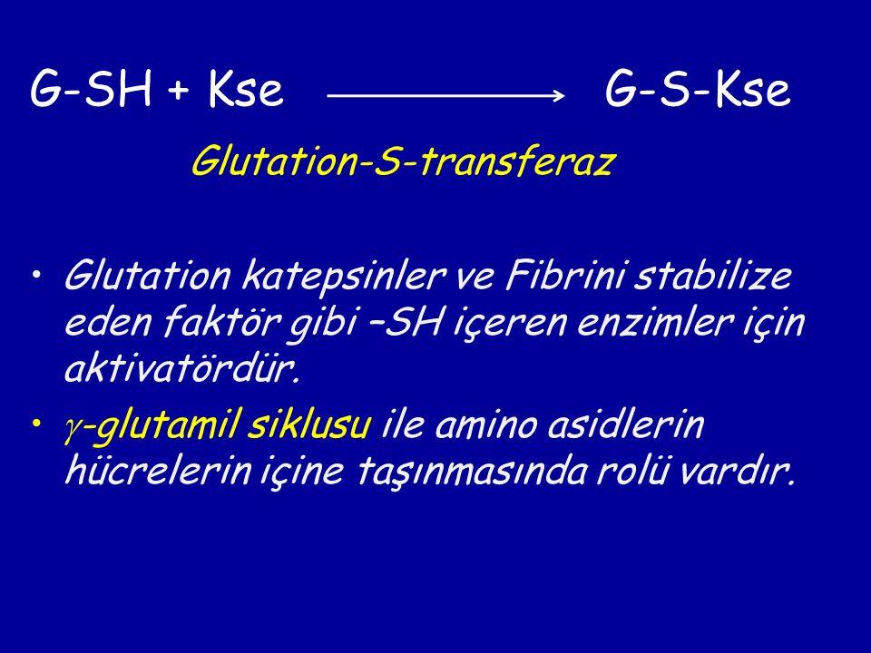 G-SH + Kse G-S-Kse Glutation-S-transferaz Glutation katepsinler ve Fibrini stabilize eden faktör gibi –SH içeren enzimler için aktivatördür.