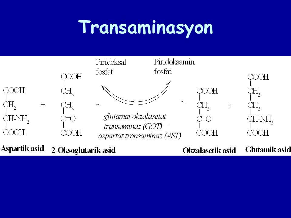 β – Konformasyon (kırmalı tabaka yapısı, moleküllerarası hidrojen bağları)