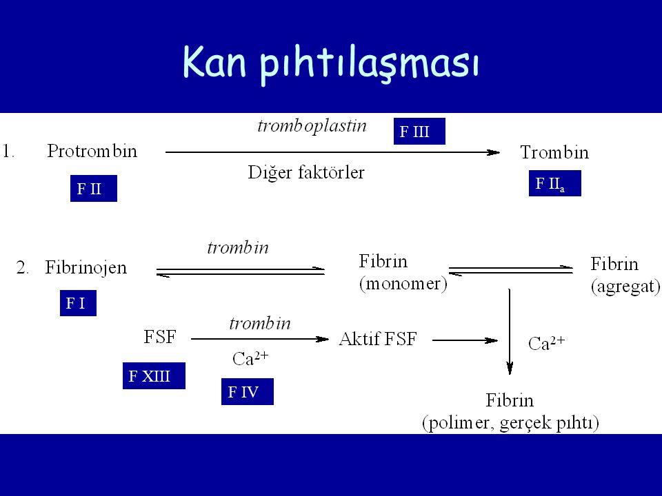 Kan pıhtılaşması F I F II F II a F III F IV F XIII