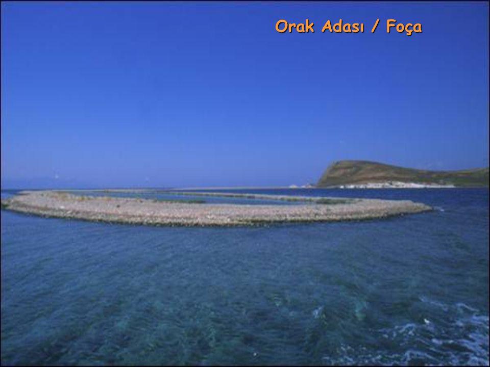 Orak Adası / Bodrum
