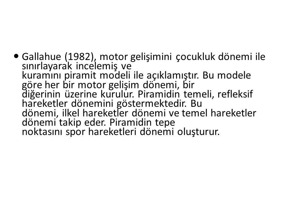 Gallahue (1982), motor gelişimini çocukluk dönemi ile sınırlayarak incelemiş ve kuramını piramit modeli ile açıklamıştır. Bu modele göre her bir motor