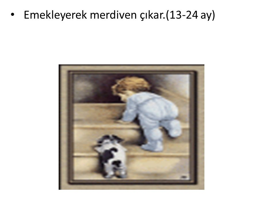 Emekleyerek merdiven çıkar.(13-24 ay) YERKÖY REHBERLİK VE ARAŞTIRMA MERKEZİ
