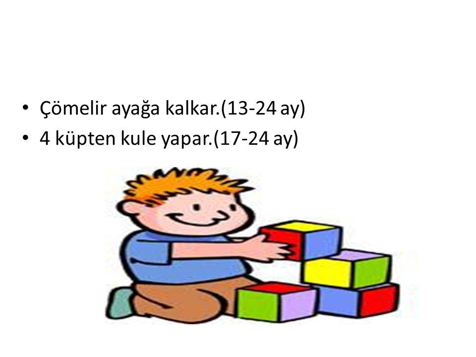 Çömelir ayağa kalkar.(13-24 ay) 4 küpten kule yapar.(17-24 ay) YERKÖY REHBERLİK VE ARAŞTIRMA MERKEZİ
