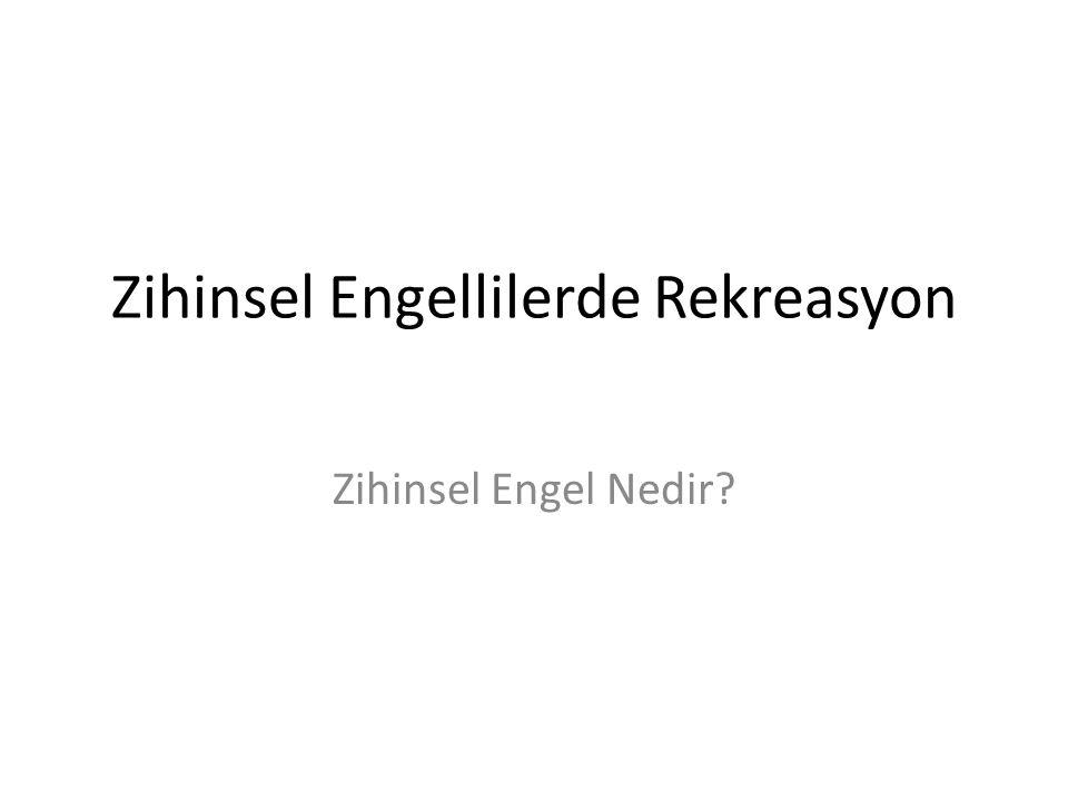 Zihinsel Engellilerde Rekreasyon Zihinsel Engel Nedir?