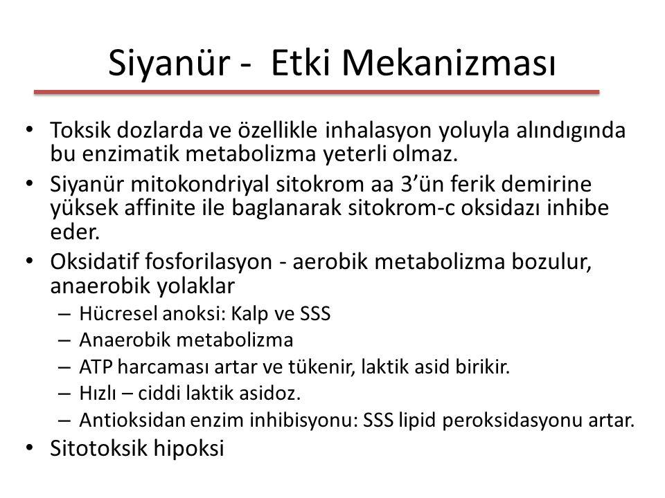 Siyanür - Etki Mekanizması Toksik dozlarda ve özellikle inhalasyon yoluyla alındıgında bu enzimatik metabolizma yeterli olmaz.