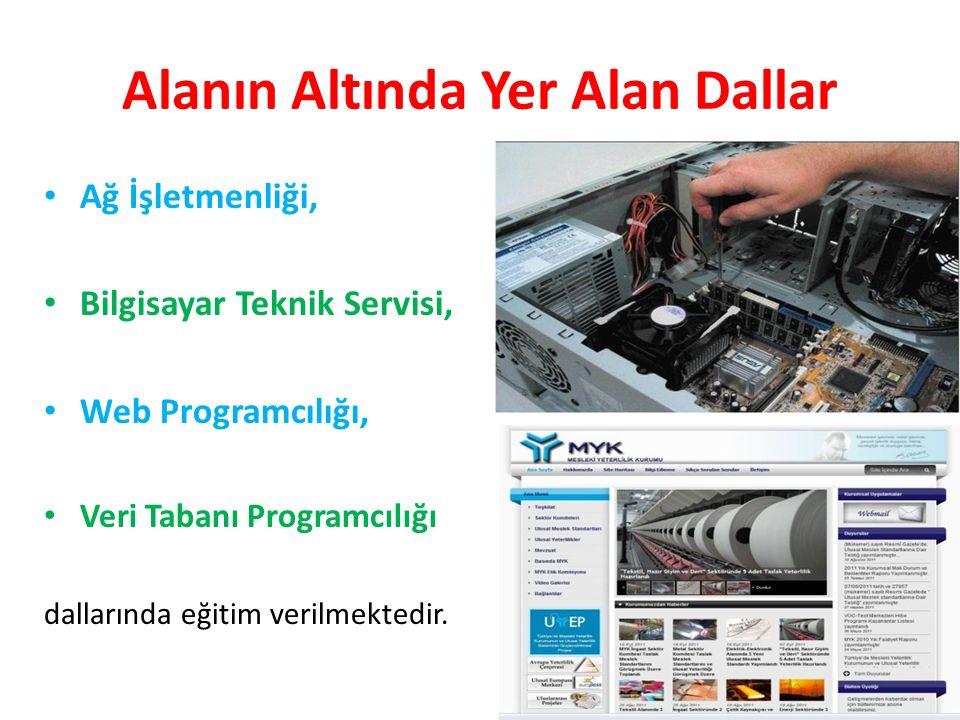 Alanın Altında Yer Alan Dallar Ağ İşletmenliği, Bilgisayar Teknik Servisi, Web Programcılığı, Veri Tabanı Programcılığı dallarında eğitim verilmektedir.