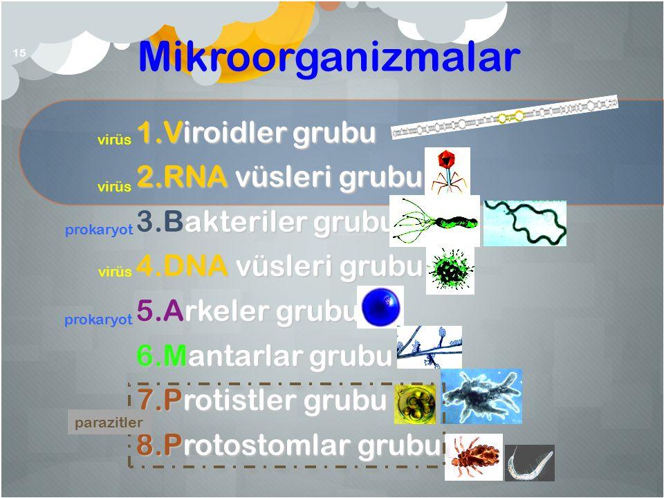 Mikroorganizmalar 15 1.Viroidler grubu 2.RNA vüsleri grubu 3.Bakteriler grubu 4.DNA vüsleri grubu 5.Arkeler grubu 6.Mantarlar grubu 7.Protistler grubu 8.Protostomlar grubu parazitler virüs prokaryot virüs