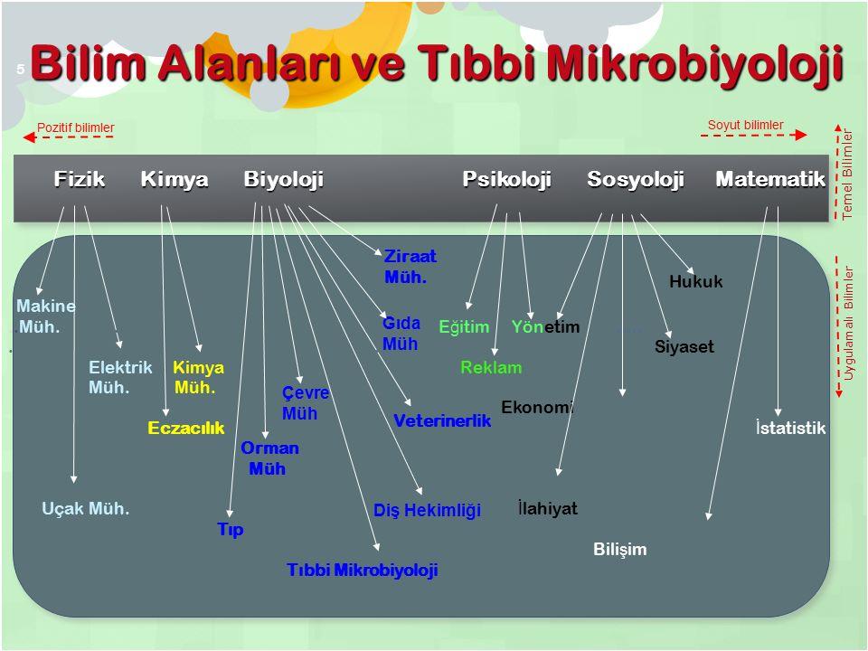 Bilim Alanları ve Tıbbi Mikrobiyoloji Pozitif bilimler Soyut bilimler Fizik Kimya Biyoloji Psikoloji Sosyoloji Matematik Makine..Müh.......................................................................E ğ itim Yönetim...............................................................................................................................Siyaset Elektrik Kimya....Reklam Müh.