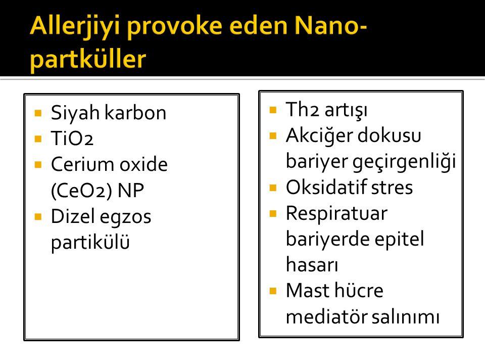  Siyah karbon  TiO2  Cerium oxide (CeO2) NP  Dizel egzos partikülü  Th2 artışı  Akciğer dokusu bariyer geçirgenliği  Oksidatif stres  Respirat