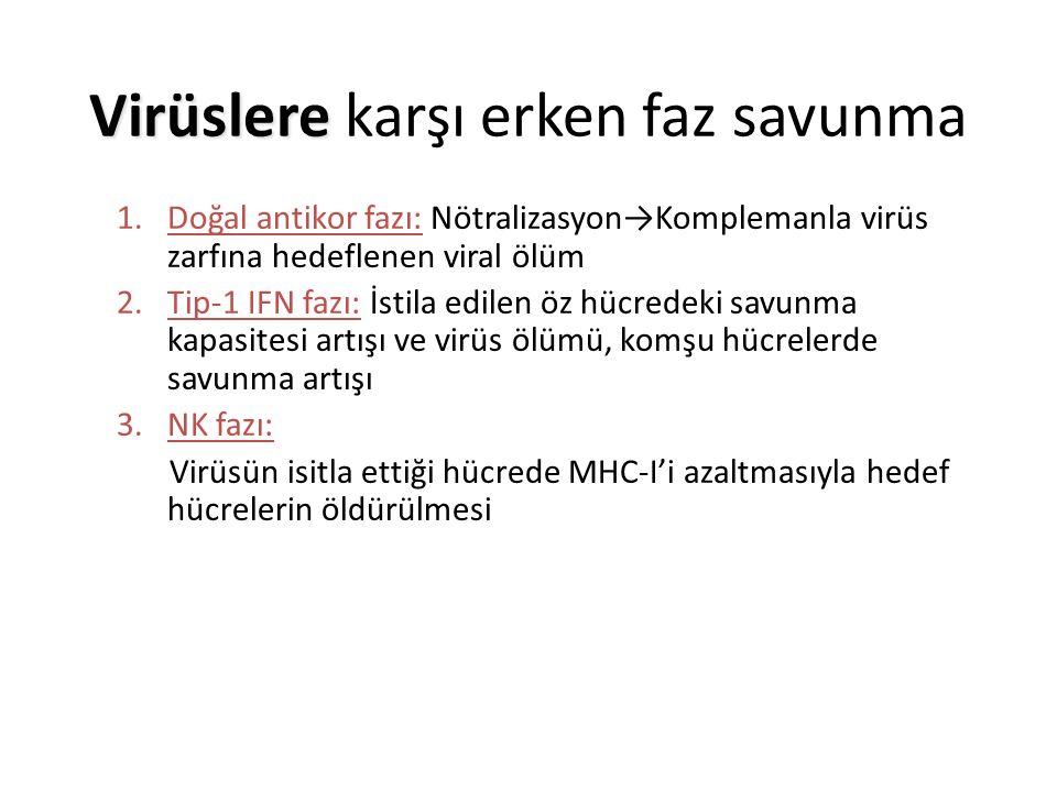 Virüslere Virüslere karşı erken faz savunma 1.Doğal antikor fazı: Nötralizasyon→Komplemanla virüs zarfına hedeflenen viral ölüm 2.Tip-1 IFN fazı: İstila edilen öz hücredeki savunma kapasitesi artışı ve virüs ölümü, komşu hücrelerde savunma artışı 3.NK fazı: Virüsün isitla ettiği hücrede MHC-I'i azaltmasıyla hedef hücrelerin öldürülmesi