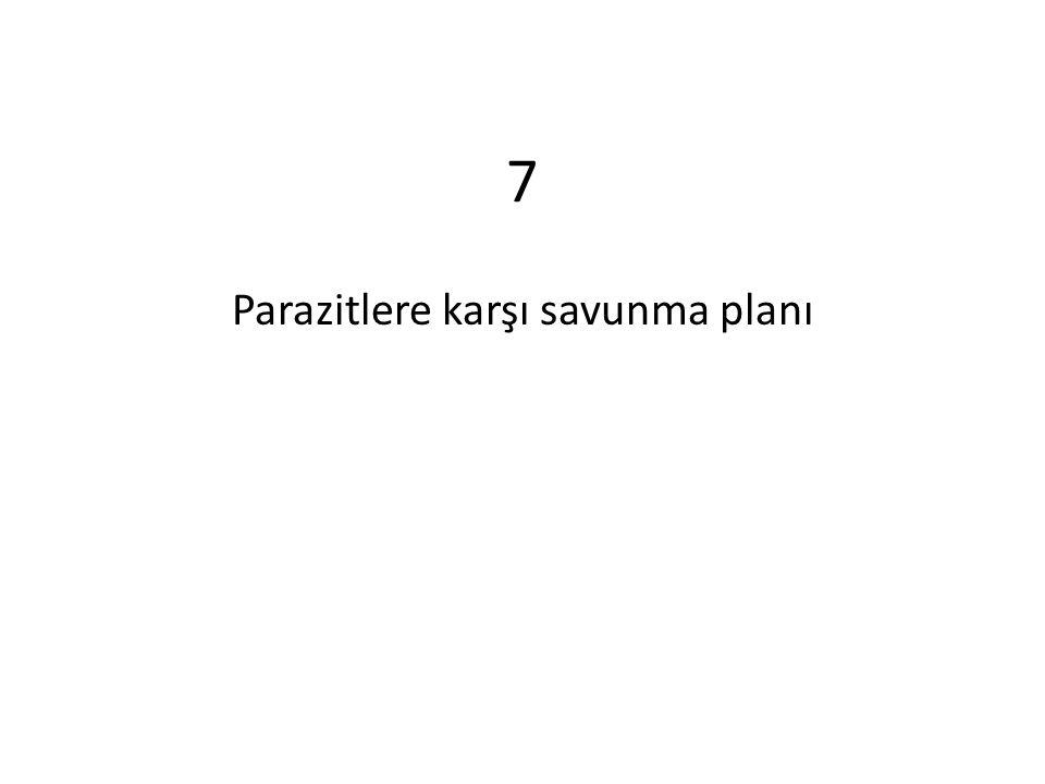 7 Parazitlere karşı savunma planı