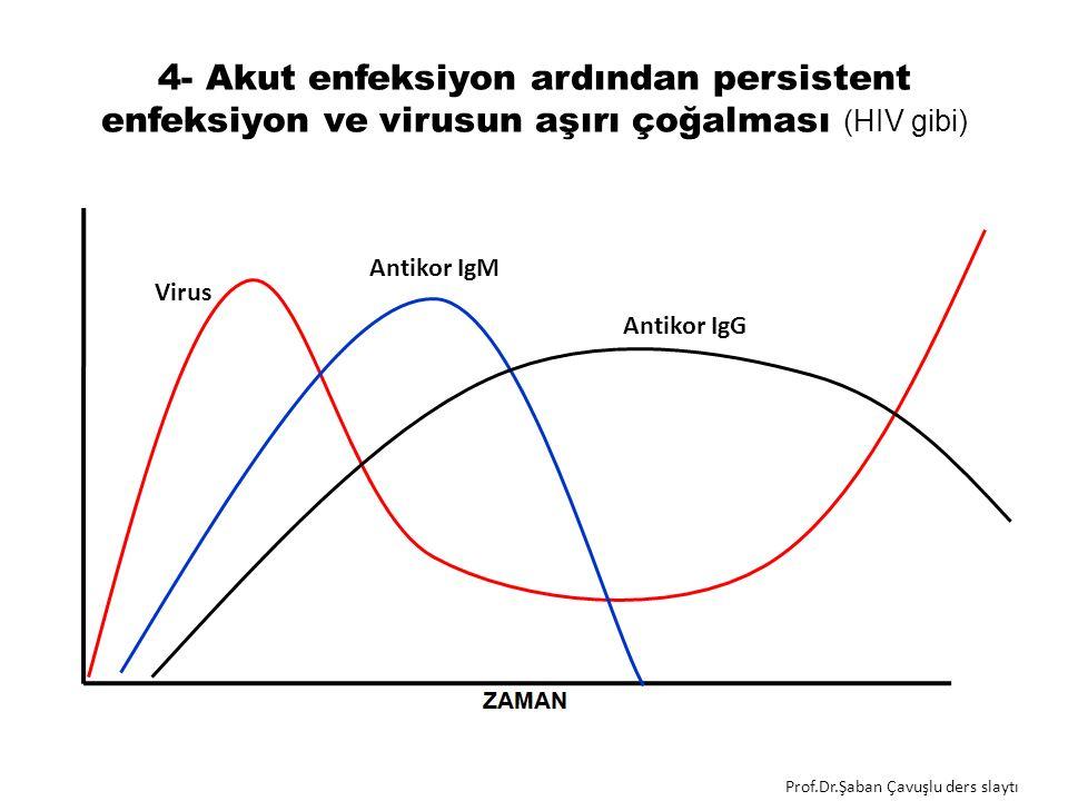 4- Akut enfeksiyon ardından persistent enfeksiyon ve virusun aşırı çoğalması (HIV gibi) Antikor IgM Virus Antikor IgG Prof.Dr.Şaban Çavuşlu ders slaytı