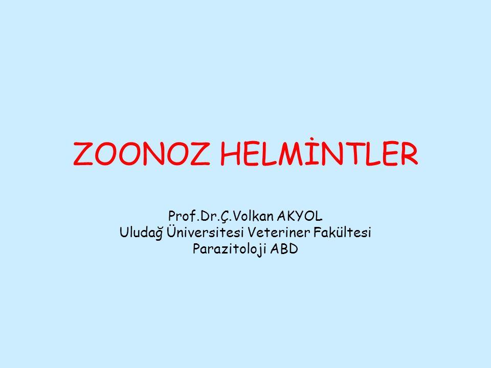 Zoonoz ; hayvanlardan insanlara (antropozoonozis), insanlardan hayvanlara (zooantropozoonozis) yada insanlarla hayvanlar arasında karşılıklı geçebilen (amphiyenosis) hastalıklar anlamında kullanılmaktadır.