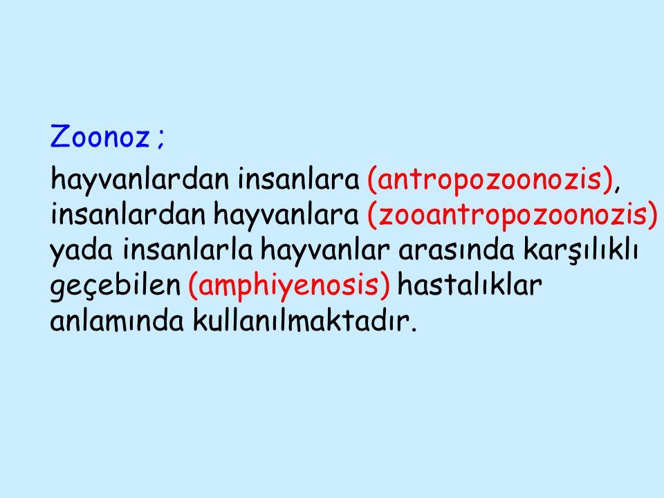 Tedavi Köpek-kedi  Fenbendazole 50 mg/kg  Flubendazole 22 mg/kg  Mebendazole 100-200 mg  Febantel 15 mg/kg  Selamectin 6 mg/kg  Ivermectin 1 mg/kg  Doramectin 1 mg/kg  Moxidectin 0,2 mg/kg  Ivermectin + Pyrantel pamoate 6+5 mg/kg