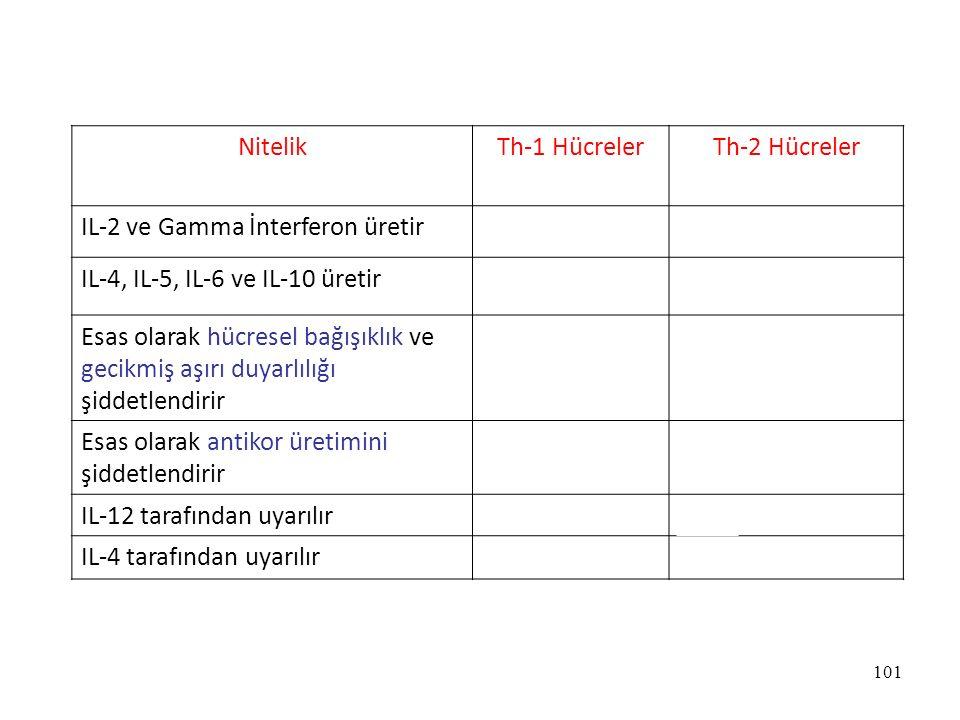 101 NitelikTh-1 HücrelerTh-2 Hücreler IL-2 ve Gamma İnterferon üretirEvetHayır IL-4, IL-5, IL-6 ve IL-10 üretirHayırEvet Esas olarak hücresel bağışıkl