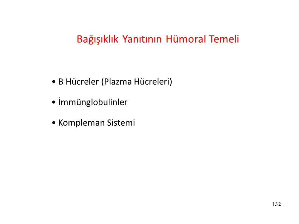 132 Bağışıklık Yanıtının Hümoral Temeli B Hücreler (Plazma Hücreleri) İmmünglobulinler Kompleman Sistemi
