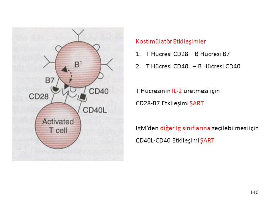 140 Kostimülatör Etkileşimler 1.T Hücresi CD28 – B Hücresi B7 2.T Hücresi CD40L – B Hücresi CD40 T Hücresinin IL-2 üretmesi için CD28-B7 Etkileşimi ŞA