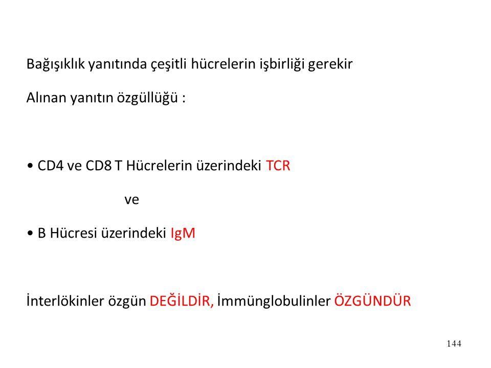 144 Bağışıklık yanıtında çeşitli hücrelerin işbirliği gerekir Alınan yanıtın özgüllüğü : CD4 ve CD8 T Hücrelerin üzerindeki TCR ve B Hücresi üzerindek